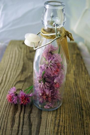 Schnittlauchblüten
